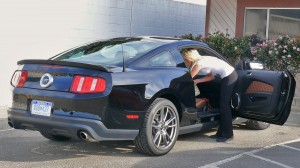 Mustang rear storage only
