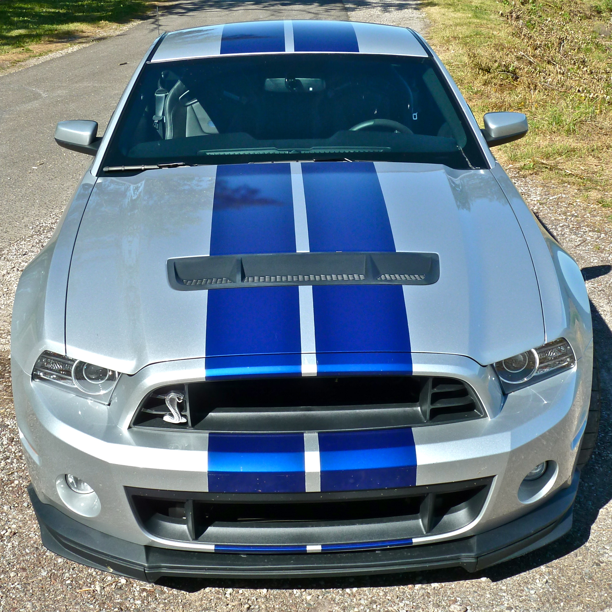 Shelby 2013 The Show Must Go On Forummustang Com