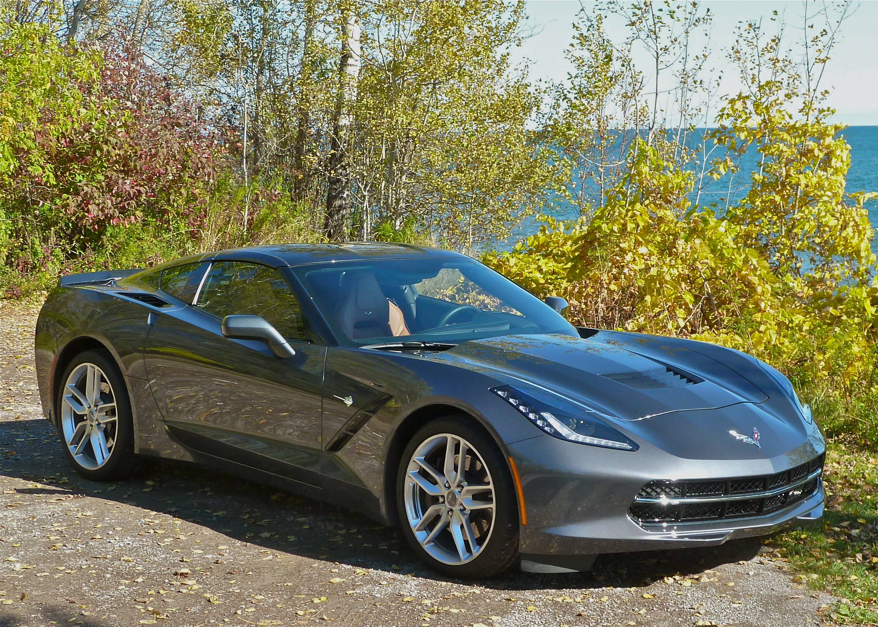 Chevrolet Stingray voted 2014 North American Car of the Year.