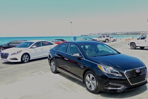 Sonata Hybrids gathered on the Pacific Beach near Los Angeles for their introduction.
