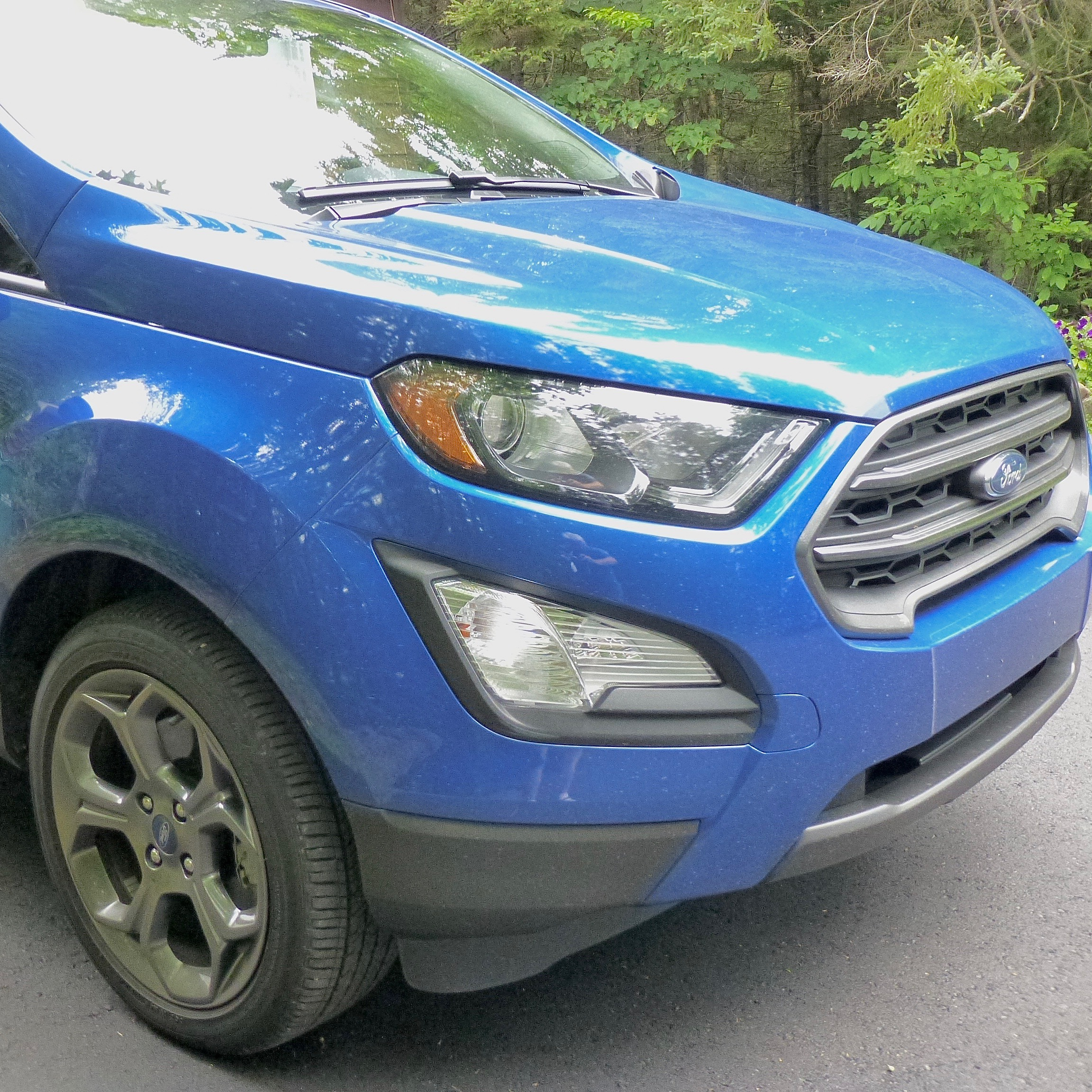 Ford's EcoSport looks like a tiny SUV, and with 4WD, it performs like one, too.