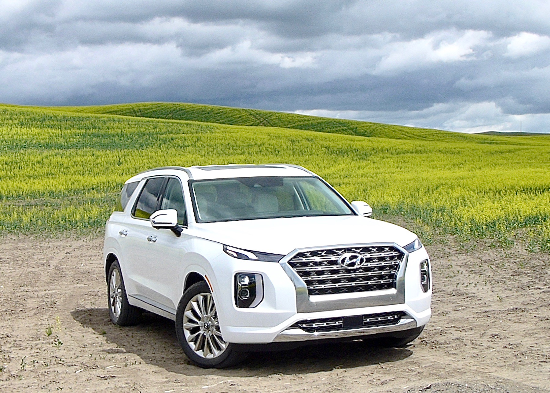 The 2020 Hyundai Palisade Limited AWD nestled into fields of Idaho Mountain flowers.