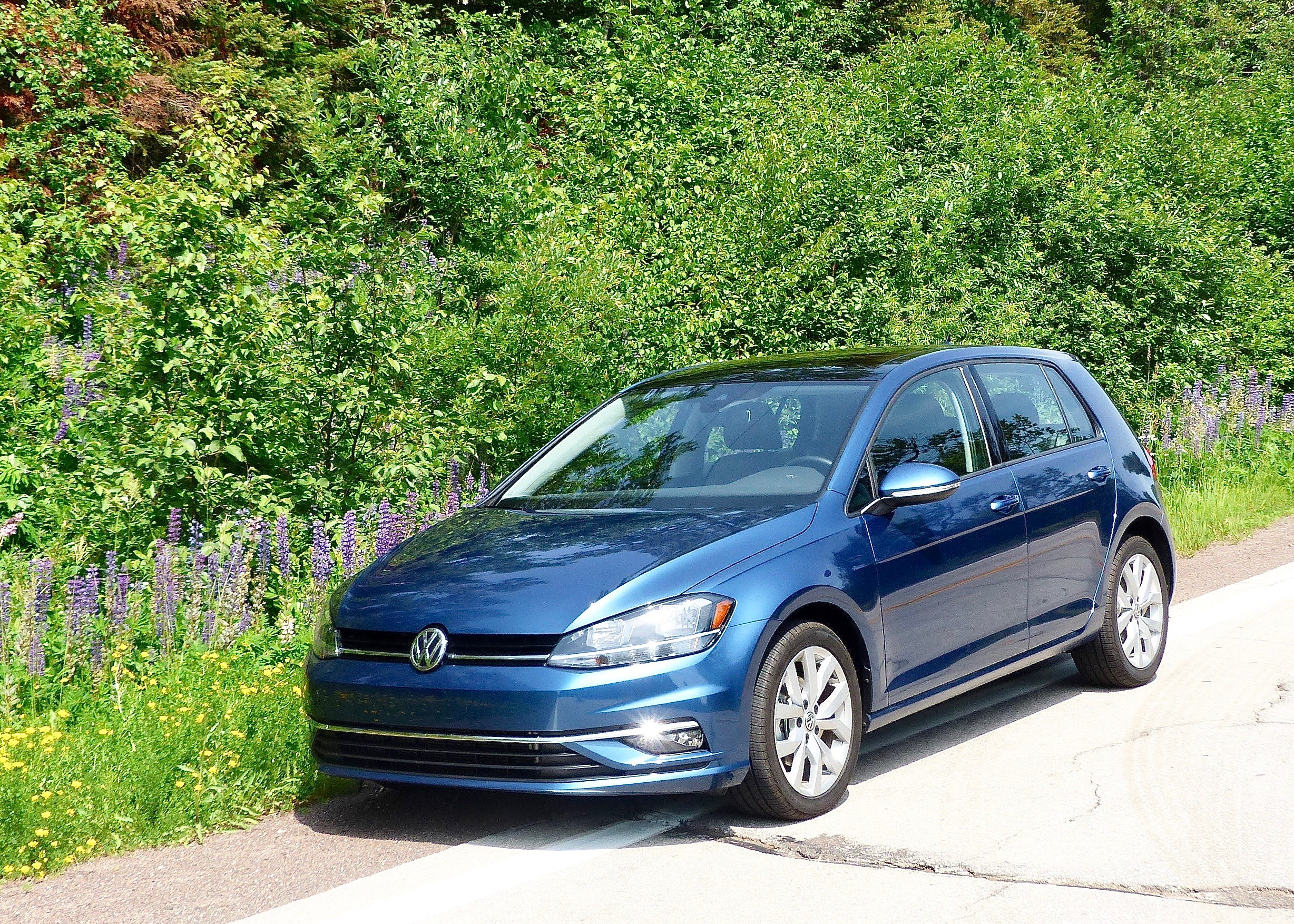 Golf SE nestled amid the late-blooming lupines before challenging potholes.